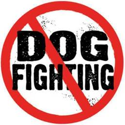 dog_fighting_circle.jpg image by wolf_woman_59
