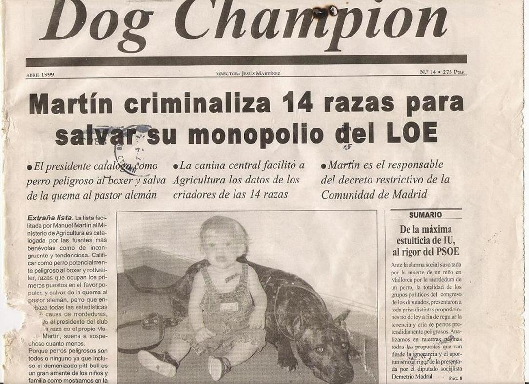 Copia de Dogchampion